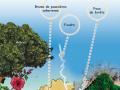 Les polluants d'origine naturelle